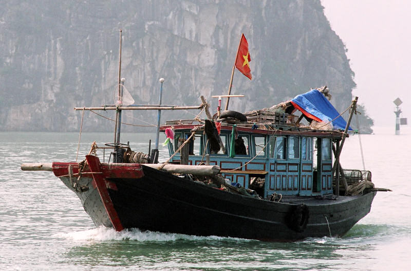 Halong Bay Square Head