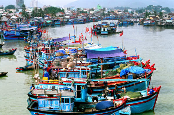 Modern Motor Fishing Vessels in Nha Trang Harbor, Vietnam