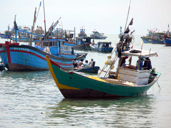 Traditional Vung Tau Boat and MFV's